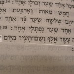 Picture of the name Jehovah shammah (or Yahweh shammah) The LORD is there in the Hebrew text of Ezekiel 48:35
