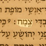 Branch (Tsemakh), one of the prophetic messianic names of Jesus, pictured in the Hebrew text of Zechariah 3:8