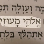 The Hebrew descriptive name of God, Elohei ma'uzzi, translated God of my strength (or God my stronghold) pictured in the text of Psalm 43:2