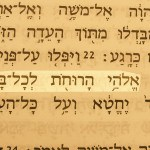 A name of God pictured in the Hebrew text: God of the spirits of all flesh (Elohei harukhot lekhol-basar) Numbers 16:22