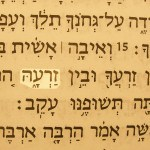 The words Her Seed pictured in the Hebrew text of Genesis 3:15. A prophetic name of Jesus.