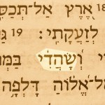 My Advocate (Sahadi) pictured in the Hebrew text of Job 16:19.