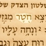 Shoot (khoter) pictured in the Hebrew text of Isaiah 11:1.