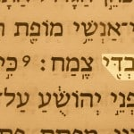 A picture of the Hebrew text of Zech. 3:8 which prophesies using My Servant as a name of Jesus.